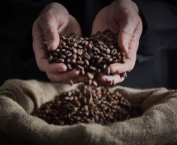 Café Finca Tirol Chitul